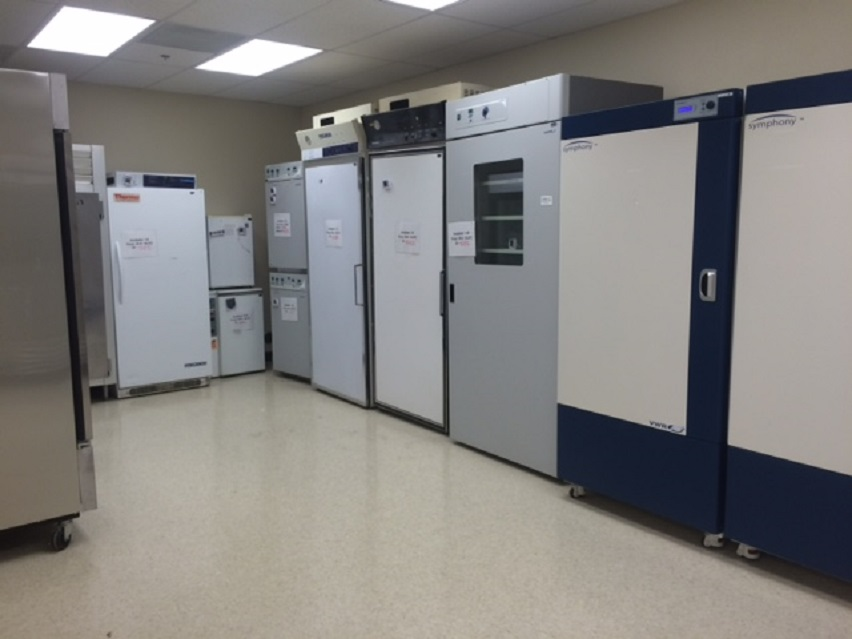 Microbiology Incubation room